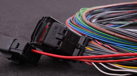 [DIAGRAM_1CA]  MaxxECU V1 / RACE / PRO harness | Mcd Wiring Harness |  | MaxxECU
