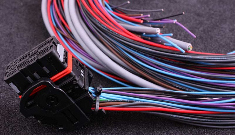 Flying lead harness for MaxxECU STREET